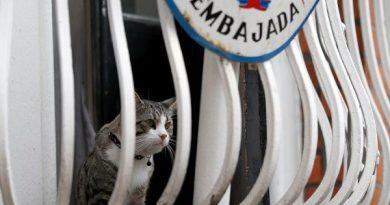 Reporter Locked Up in Ecuador Embassy Room During Assange Visit