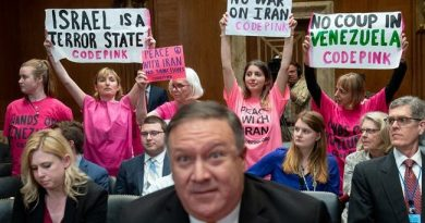 """Codepink Co-Founder Asks us All to """"Stand up to US Bullies"""" Over Venezuela Coup Attempt"""