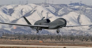 Oman Denies Having Informed Iran of US Attack After US Drone was Shot Down