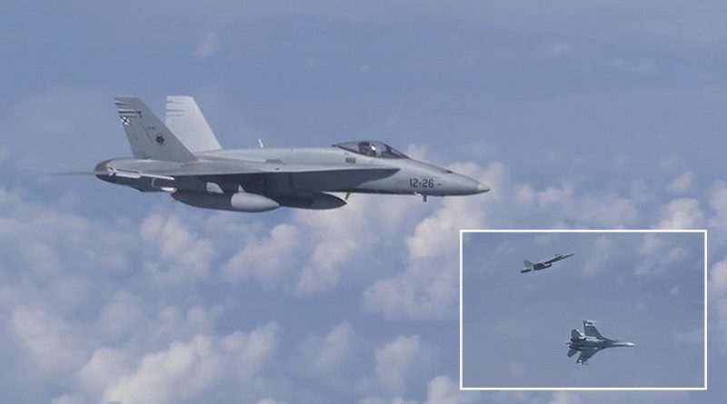 NATO F-18 'Spooked Away' From Russian Defense Minister's Plane (Video)