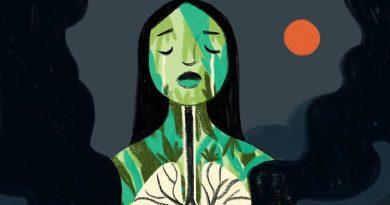 Environmental Terrorism: The Amazon Rainforest as a Target