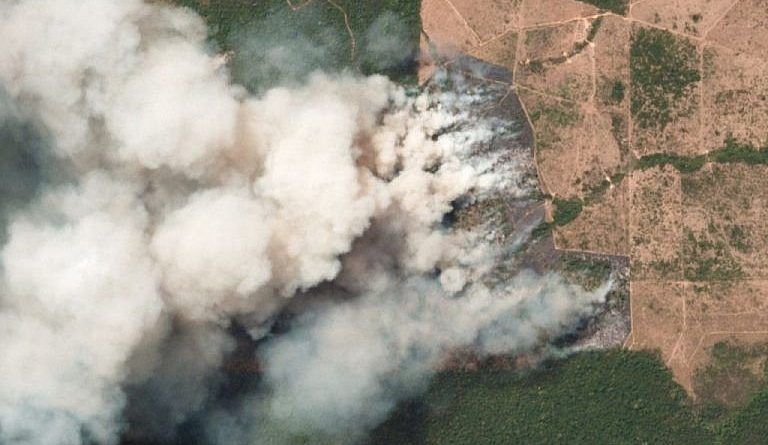 Venezuela Offers Help to Mitigate Forest Fires in the Amazon