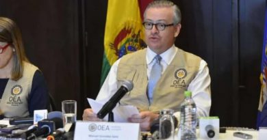 Bolivia Elections: OAS Mission Reports No Fraud but Advises a Second Round (Upside Down World)