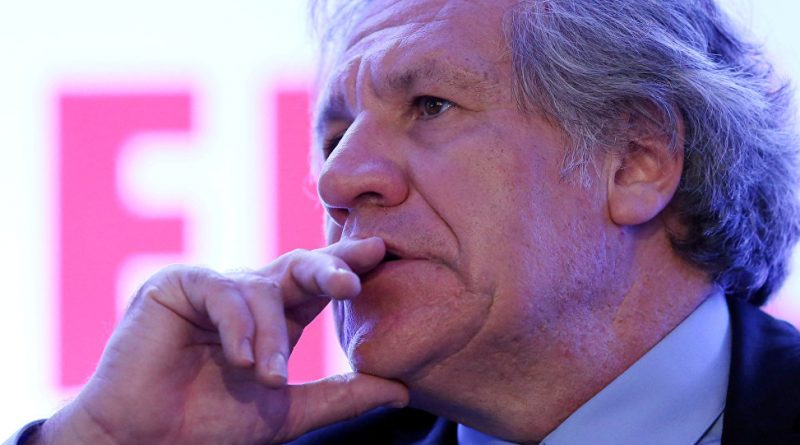 The Double Standards of Luis Almagro On View Again at the OAS