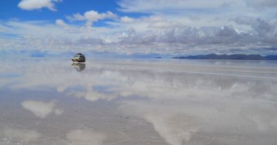 Bolivian Coup Comes Less Than a Week After Morales Stopped Multinational Firm's Lithium Deal