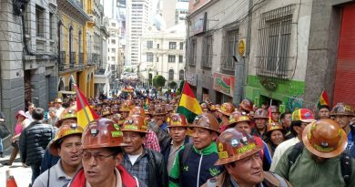 Bolivians Mobilize in Defense of Evo Morales (Video)