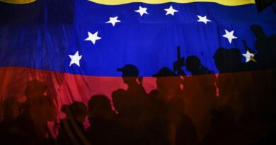 Dialogue Between Venezuelan Government and Opposition in Mexico: Perspectives and Demands