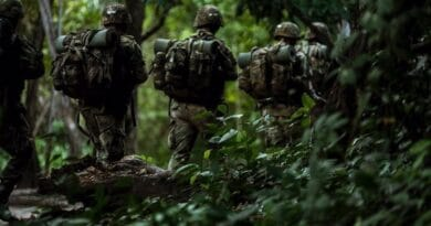 Colombian soldiers in the jungle. File photo courtesy of the Colombian Ministry for Defense.